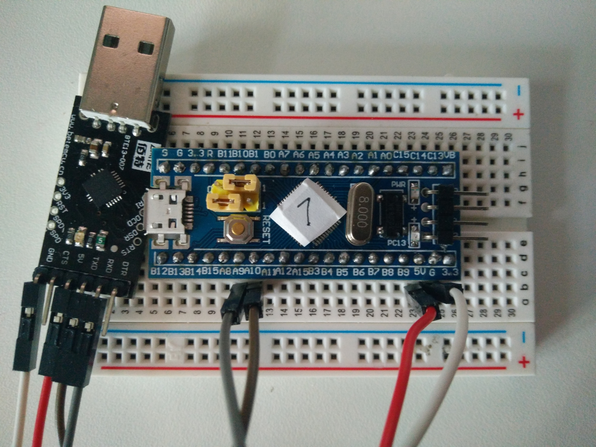 Picture of Blue Pill wired to TTL serial adapter